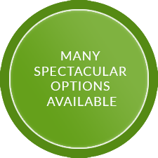Spectacular Options Available